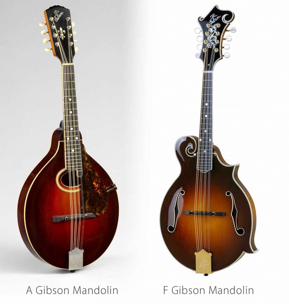 Mandolin Gibson F vs Gibson A