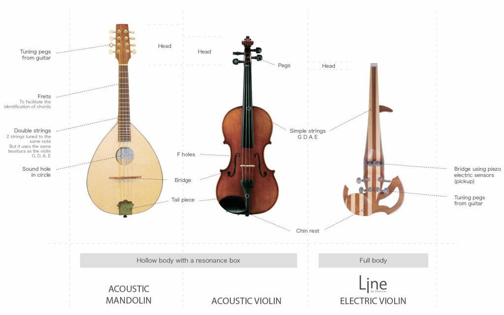 Differences and similarities between a violin and a mandolin