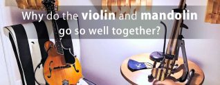 Why do the mandolin and the violin go so well together?