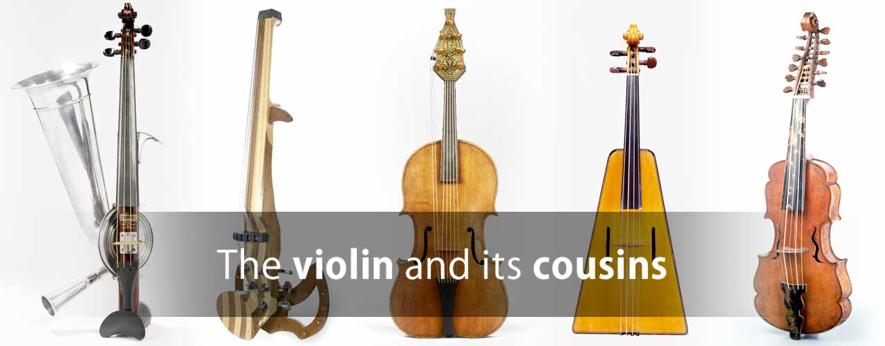 The violin and its cousins